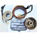 Conjunto alternador USADO Sanglas 400Y (Motoplat 9760001).